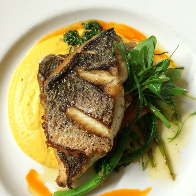 Seared Yellowtail Snapper with Butternut Squash Pudding, Broccolini, Tomato Confit, Paprika Oil