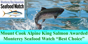 Salmon King AlpineBest Choice